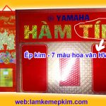 Ep-kim-gia-cong-bia-lich-tet-nhu-7-mau-hv01